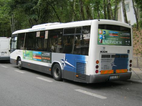airv-enervida autocarro stuv viseu